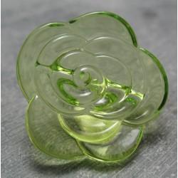 Bouton rose translucide vert anis 30 mm b1