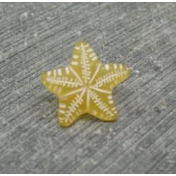 Bouton étoile de mer ocre 12mm