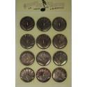Plaque N°33  12 nacres coquillage marron 27mm