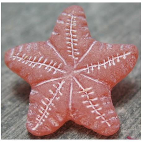 Bouton étoile de mer vieux rose 18 mm b4